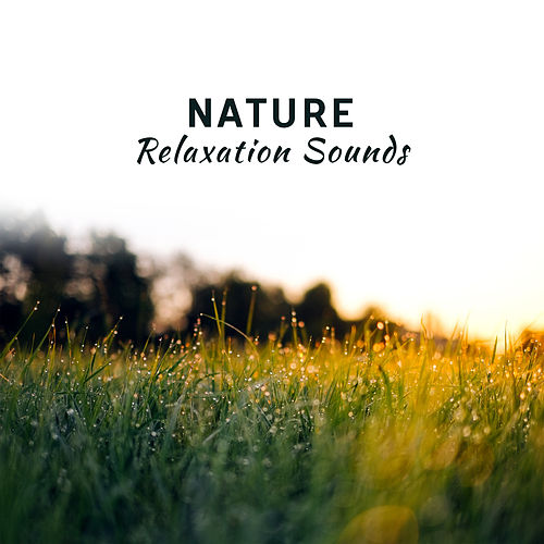 Nature Relaxation Sounds – Soft Nature for Mind Peace, Inner Relaxation, Stress Relief, New Age Music by Relaxing Sounds of Nature