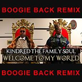 Welcome to My World (Boogie Back Remix) by Kindred The Family Soul