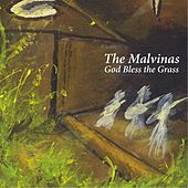 God Bless the Grass by The Malvinas