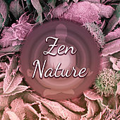 Zen Nature – Relaxing Music, New Age 2017, Deep Meditation, Yoga, Rest, Relief Stress by Sounds Of Nature