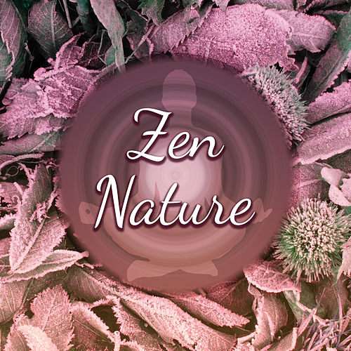 Play & Download Zen Nature – Relaxing Music, New Age 2017, Deep Meditation, Yoga, Rest, Relief Stress by Sounds Of Nature | Napster