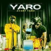 Avant Yaro by Sirsy