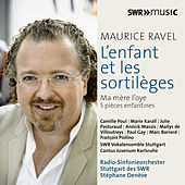 Ravel: Orchestral Works, Vol. 5 by Various Artists