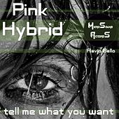 Tell Me What You Want (Flavio Bello Edit) von Hybrid