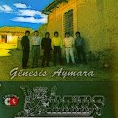Génesis Aymara de K'Jarkas