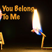 You Belong To Me von Various Artists