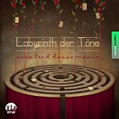 Labyrinth der Töne, Vol. 19 - Deep & Tech-House Music by Various Artists