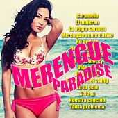 Merengue Mania Vol. 2 by Various Artists