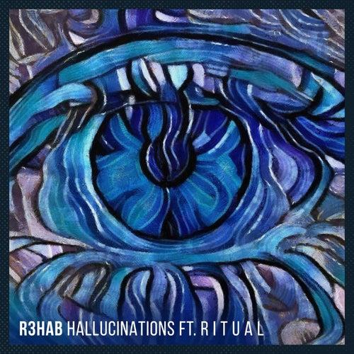 Hallucinations by R3HAB