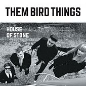 House of Stone by Them Bird Things