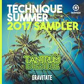 Gravitate (Technique Summer 2017 Album Sampler) by Tantrum Desire