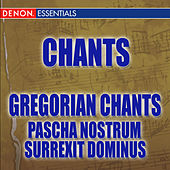 Play & Download Pascha Nostrum - Surrexit Dominus by Fulvio Rampi Cantori Gregoriani | Napster