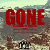 Gone by Phenom