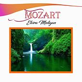 Mozart, Elvira Medigan by Various Artists