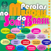 Pérolas Musicais no Som do Brasil by Various Artists