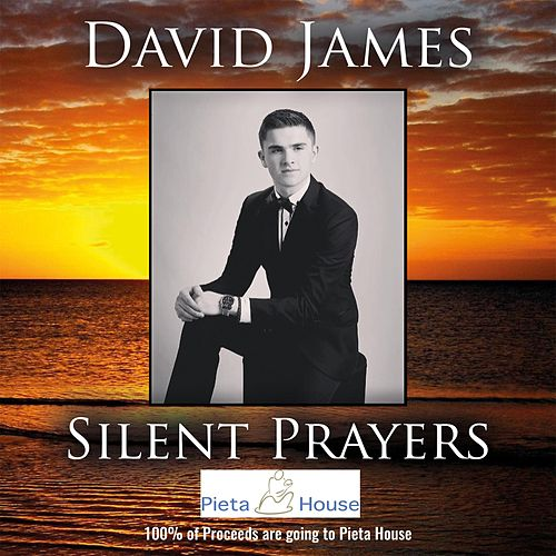 Silent Payers by David James
