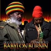 Babylon Burnin' (feat. Yami Bolo) by Bigga Haitian