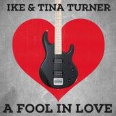 A Fool In Love von Phil Spector