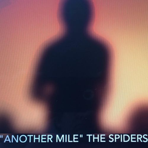 Another Mile by The Spiders