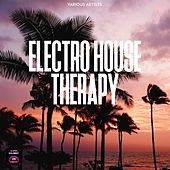 Electro House Therapy by Various