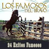 Play & Download 24 Exitos Famosos by Los Famosos del Bravo | Napster
