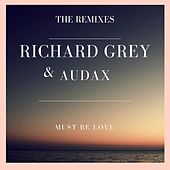 Must Be Love (The Remixes) by Richard Grey