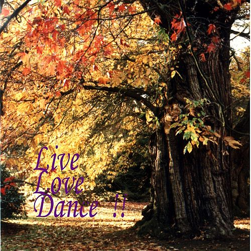 Live, Love, Dance by Chris Martin