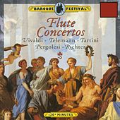 Vivaldi - Tartini - Richter - Pergolesi - Telemann: Flute Concertos by Various Artists