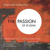 The Passion of St John by Various Artists