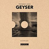 Geyser by Promise Land