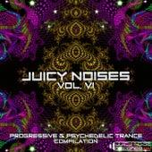 Juicy Noises, Vol. 6 by Various Artists