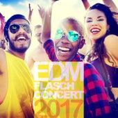 EDM Flasch Concert 2017 by Various Artists