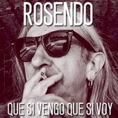 Que si vengo que si voy by Rosendo
