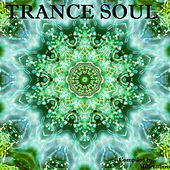Trance Soul, Compiled by Sparrow & Millennium by Various Artists