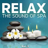 Relax, Vol. 3 (The Sound of Spa) by Various Artists