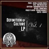 Definition Of Culture LP by Various Artists