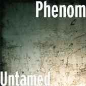 Untamed by Phenom