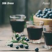 Silk Dress by Punci