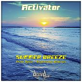 Summer Breeze (The Remixes) by Activator