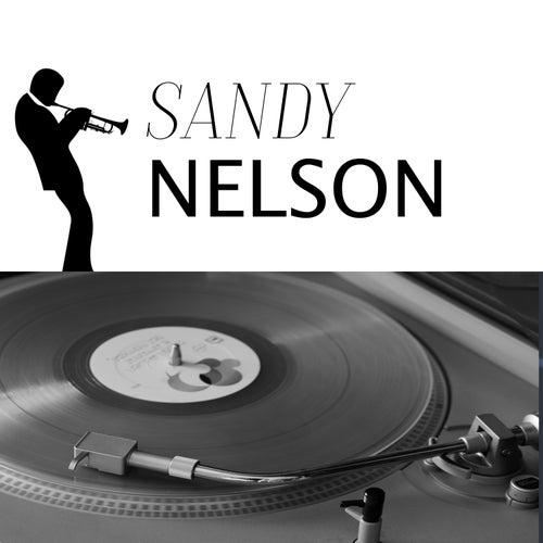 Lost Dreams de Sandy Nelson