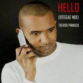 Hello (Reggae Mix) by Trevor Pinnock