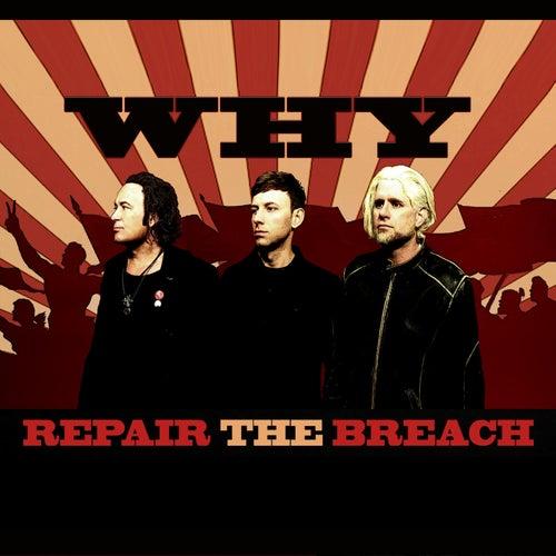 Repair the Breach by Why?