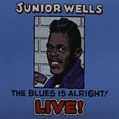 The Blues Is Alright by Junior Wells