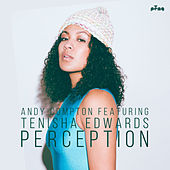 Perception (feat. Tenisha Edwards) by Andy Compton