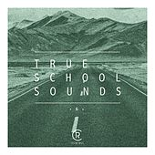 True School Sounds, Vol. 6 by Various Artists