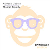 Minimal Timidity by Anthony Godwin