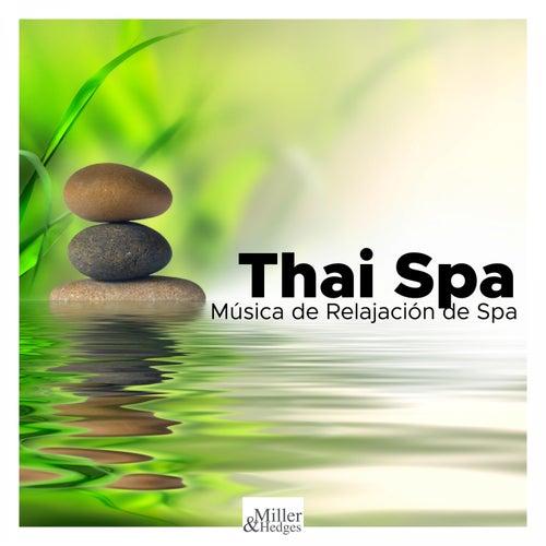 Thai Spa - Música de Relajación de Spa de Fondo para Áreas de Relajación, Masajes y Tratamientos Ins by Liquid Stranger