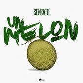 Un Melón by Sensato