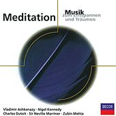 Play & Download Meditation - Musik zum Entspannen und Träumen by Various Artists | Napster