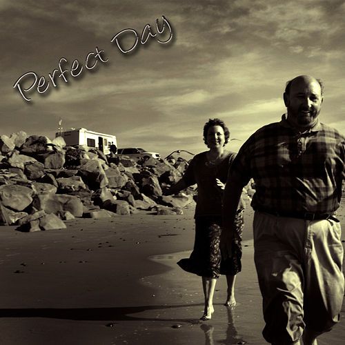 Play & Download Perfect Day by Studio All Stars | Napster